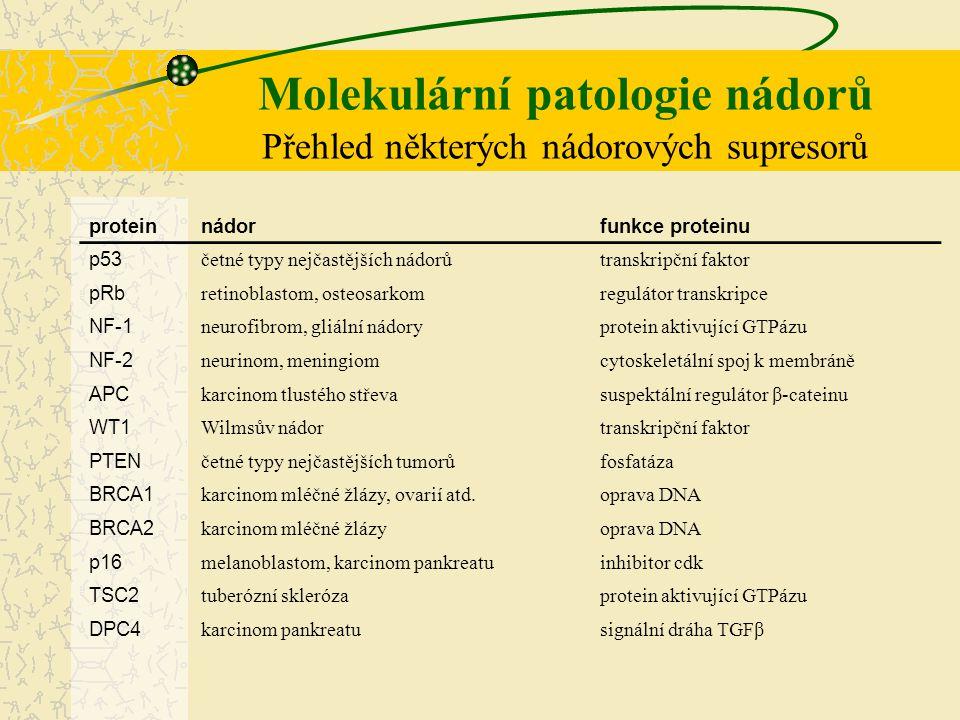Molekulární patologie nádorů Přehled některých nádorových supresorů