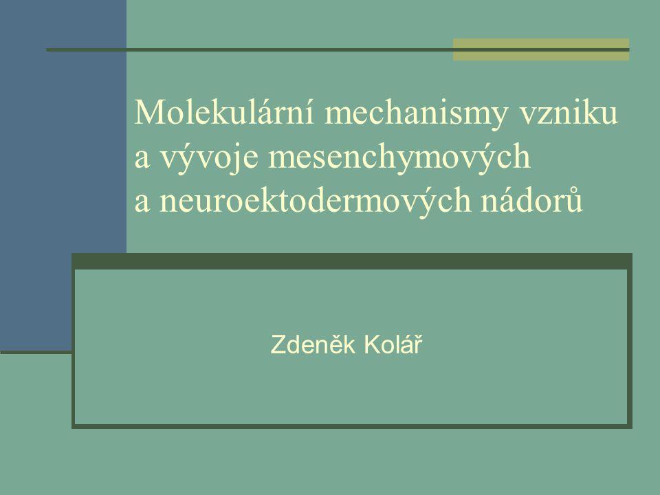 Molekulární mechanismy vzniku a vývoje mesenchymových a neuroektodermových nádorů