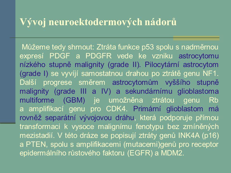 Vývoj neuroektodermových nádorů