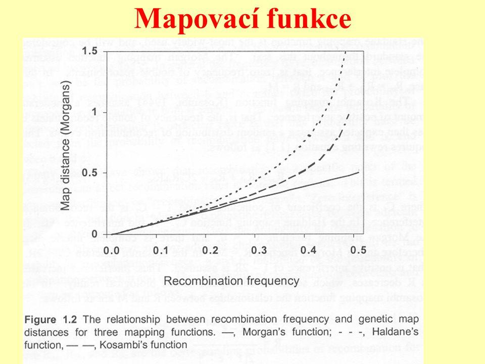 Mapovací funkce