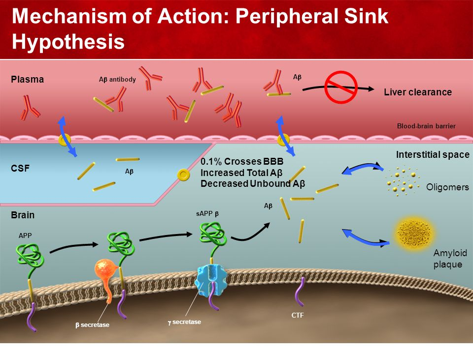 Mechanism of Action: Peripheral Sink Hypothesis