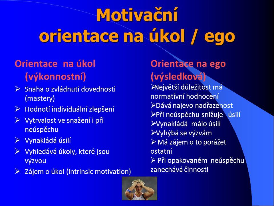Motivační orientace na úkol / ego