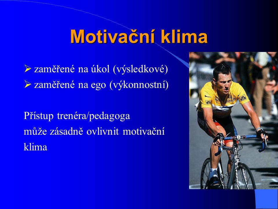 Motivační klima zaměřené na úkol (výsledkové)