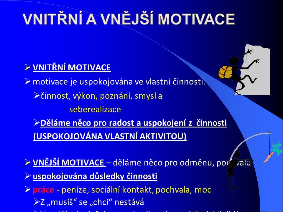 Vnitřní a vnější motivace
