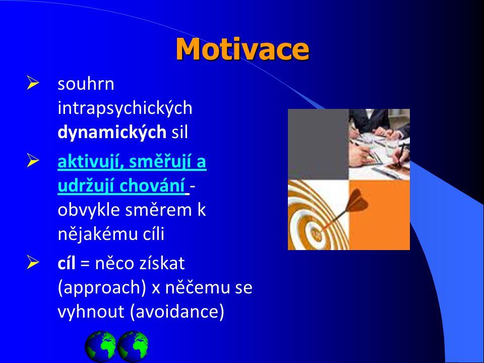 Motivace souhrn intrapsychických dynamických sil