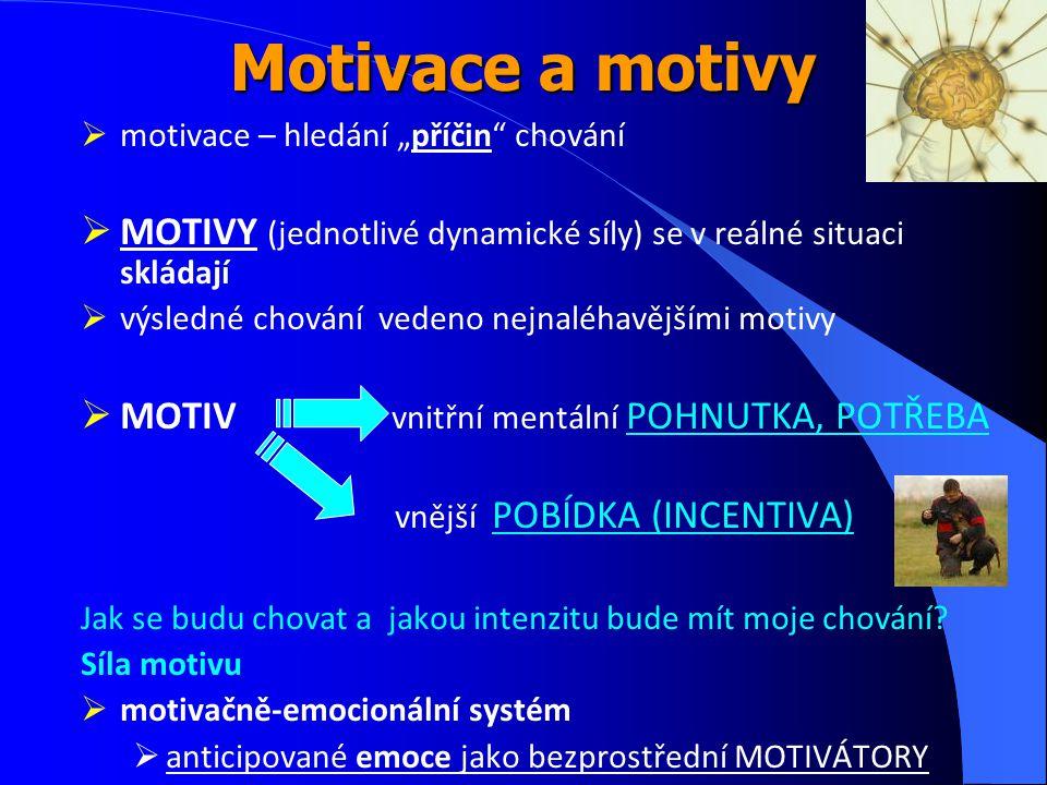 """Motivace a motivy motivace – hledání """"příčin chování. MOTIVY (jednotlivé dynamické síly) se v reálné situaci skládají."""