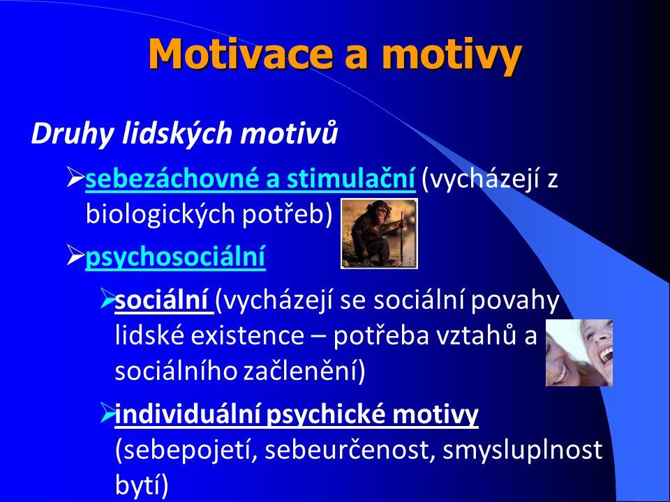 Motivace a motivy Druhy lidských motivů