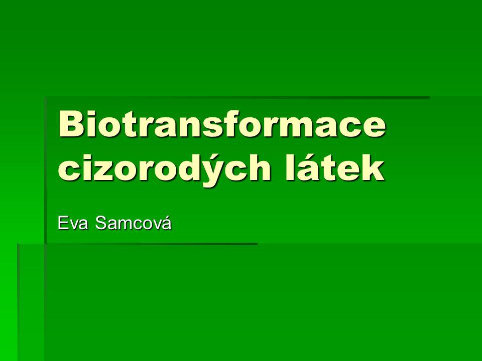 Biotransformace cizorodých látek