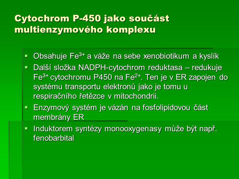Cytochrom P-450 jako součást multienzymového komplexu