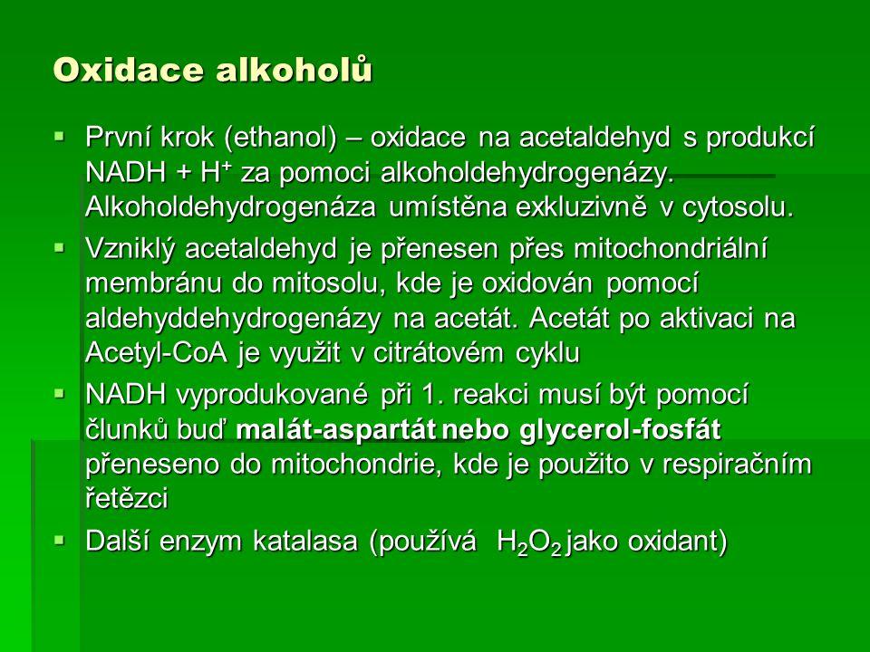 Oxidace alkoholů