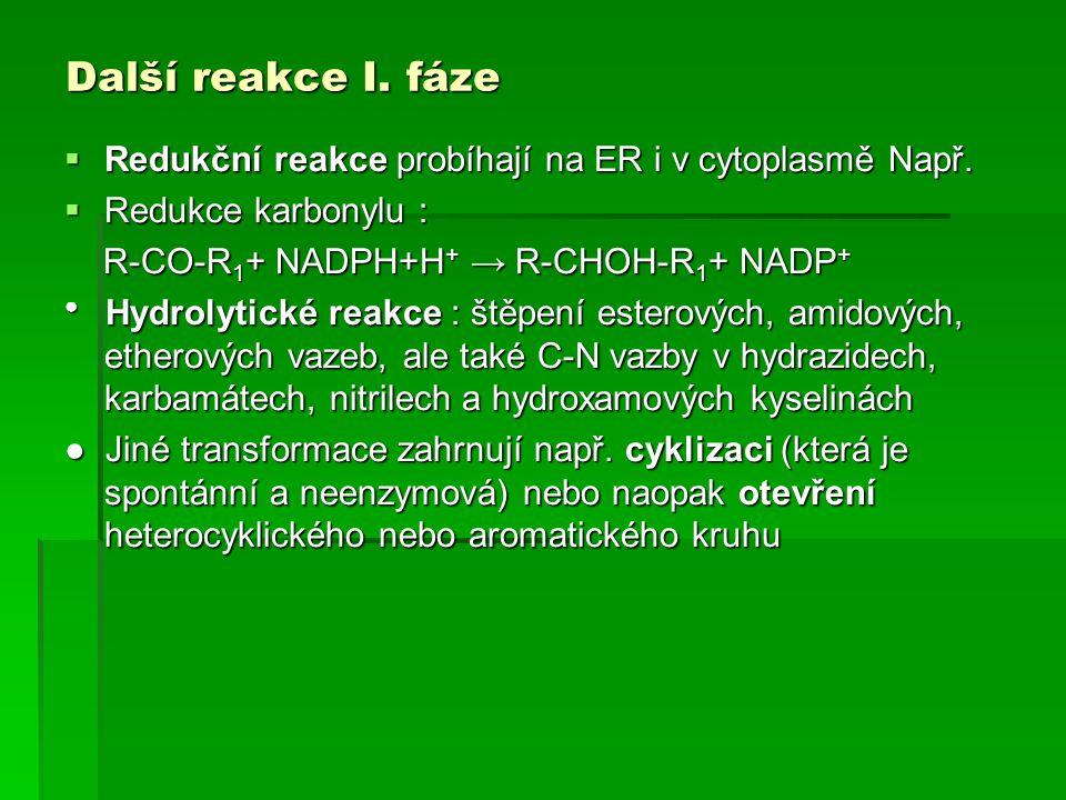 Další reakce I. fáze Redukční reakce probíhají na ER i v cytoplasmě Např. Redukce karbonylu : R-CO-R1+ NADPH+H+ → R-CHOH-R1+ NADP+