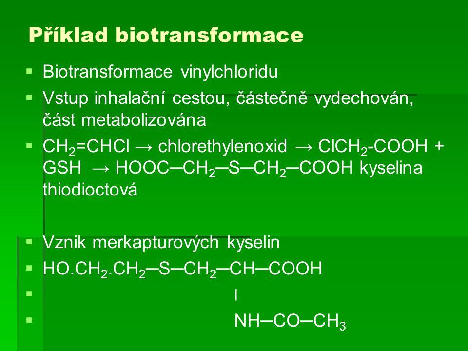 Příklad biotransformace