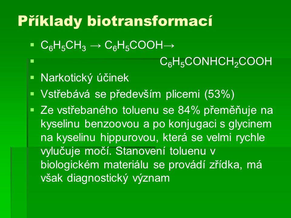Příklady biotransformací