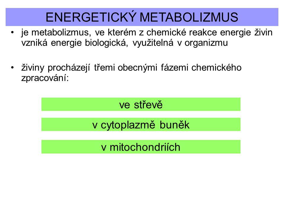 ENERGETICKÝ METABOLIZMUS
