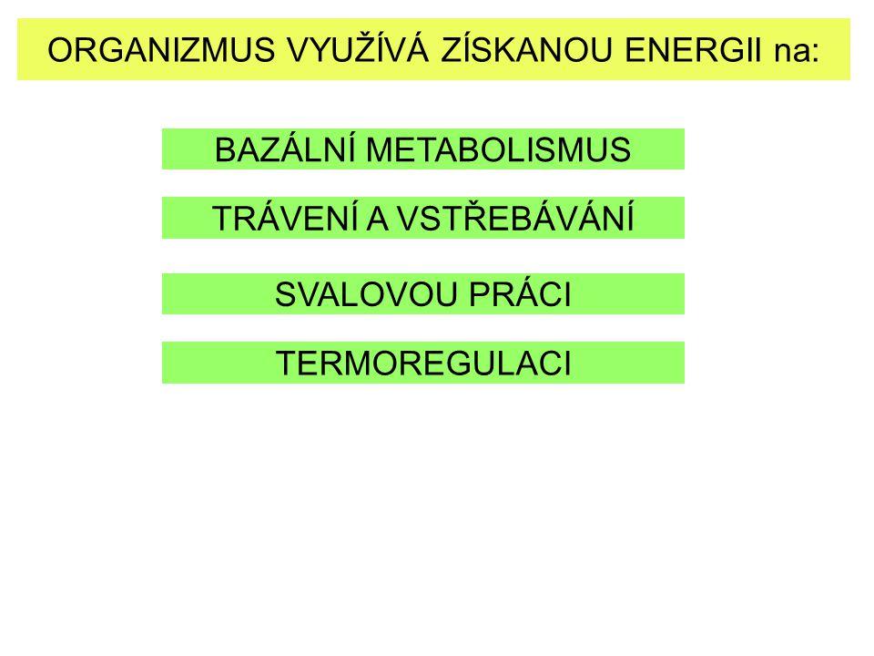 ORGANIZMUS VYUŽÍVÁ ZÍSKANOU ENERGII na: