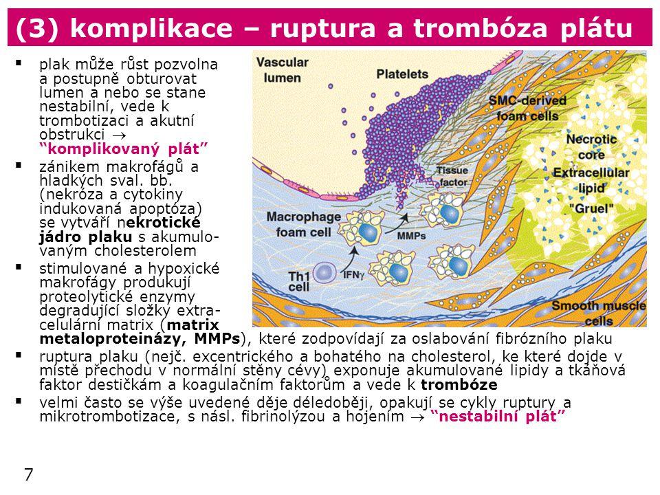 (3) komplikace – ruptura a trombóza plátu