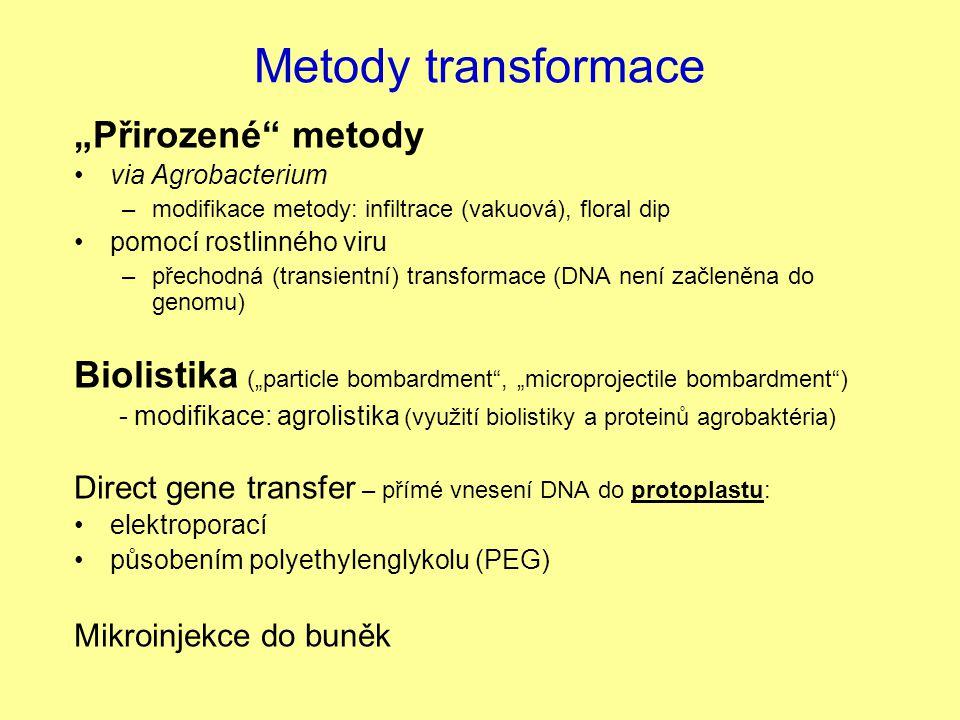 "Metody transformace ""Přirozené metody"