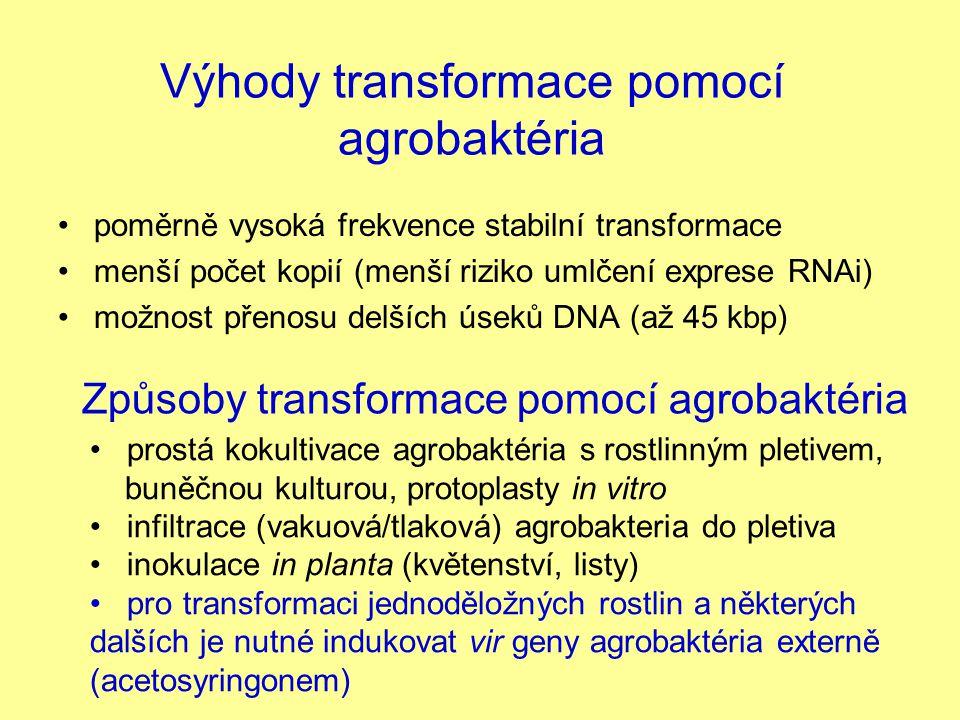Výhody transformace pomocí agrobaktéria