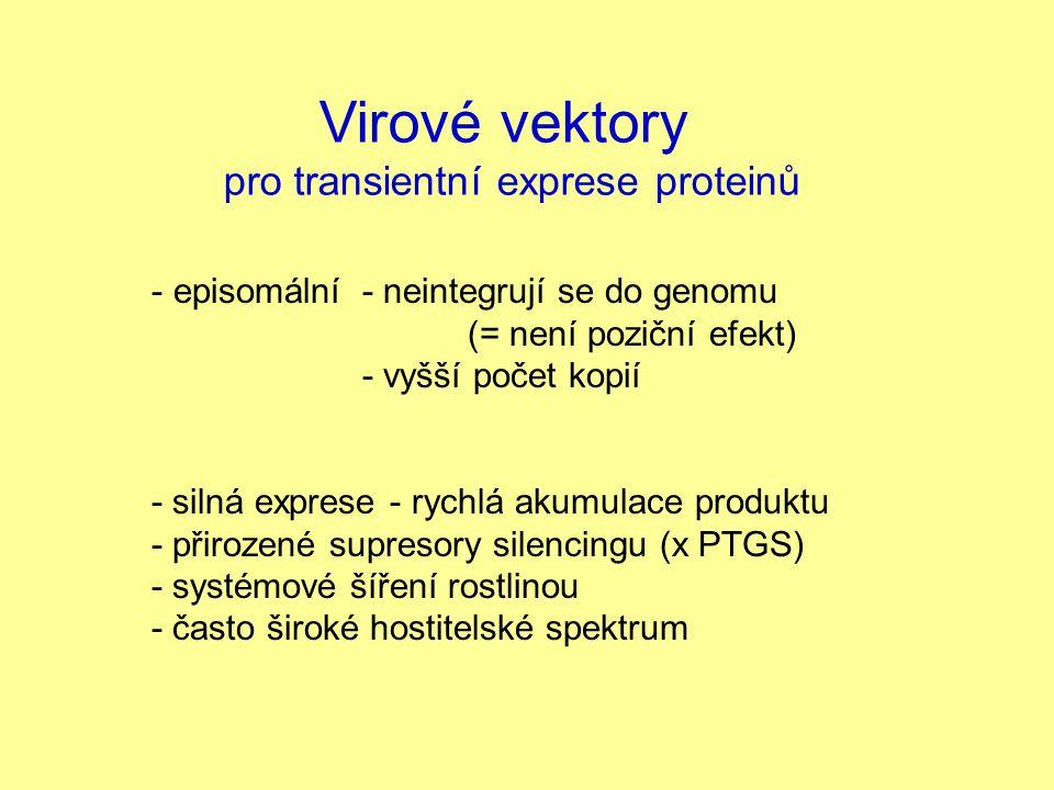 pro transientní exprese proteinů