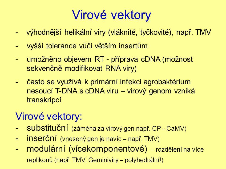 Virové vektory Virové vektory: