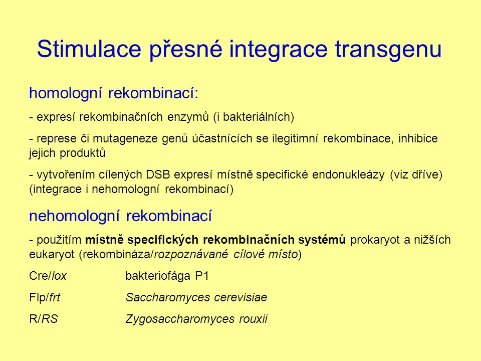 Stimulace přesné integrace transgenu
