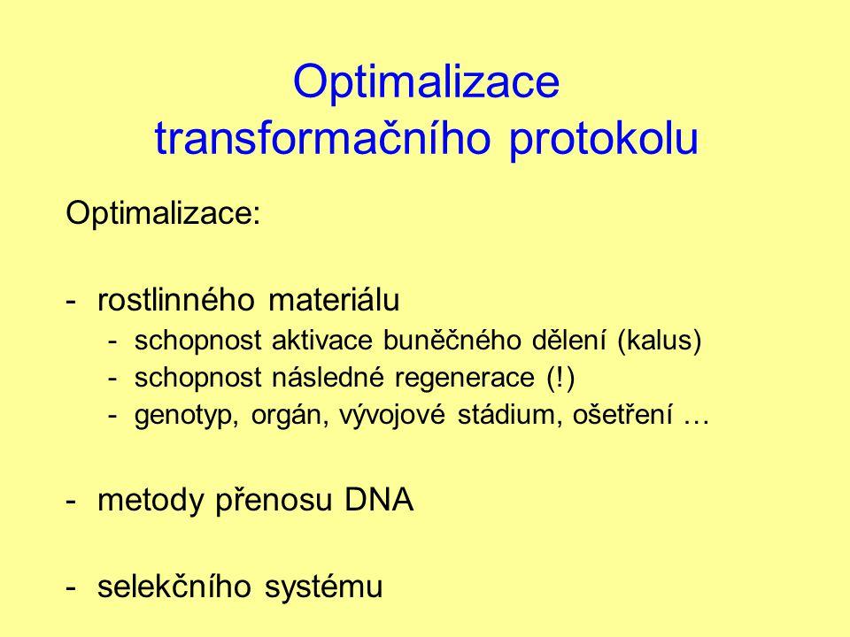 Optimalizace transformačního protokolu