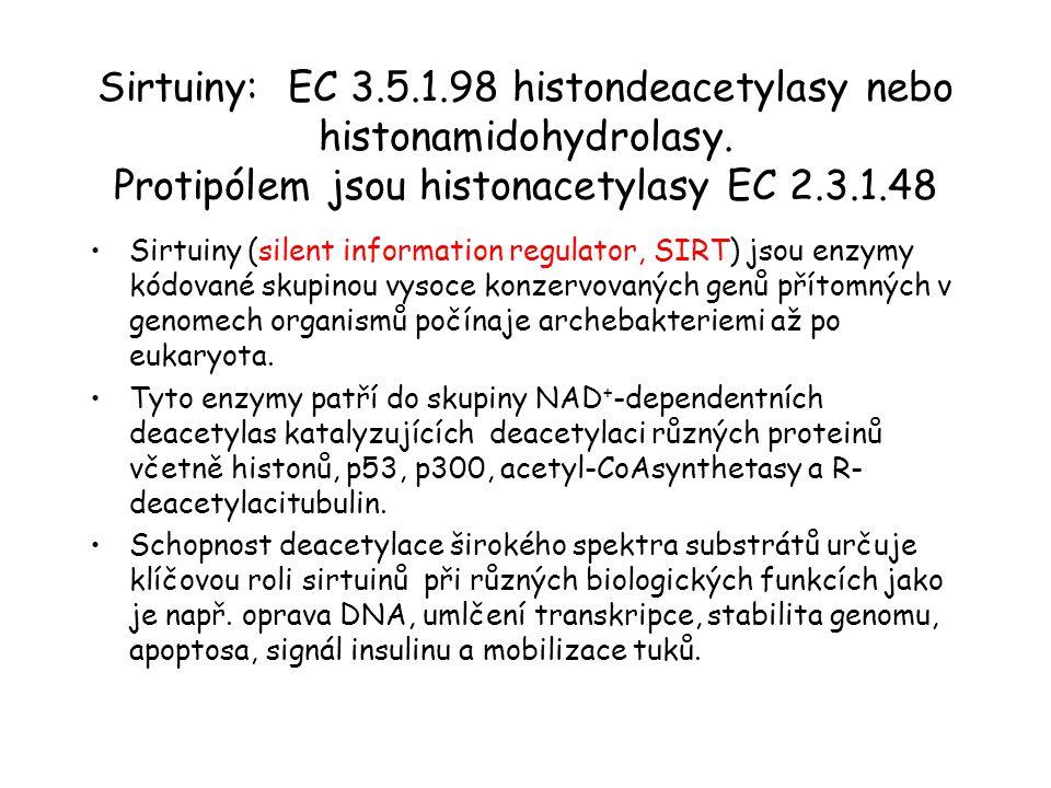 Sirtuiny: EC 3. 5. 1. 98 histondeacetylasy nebo histonamidohydrolasy
