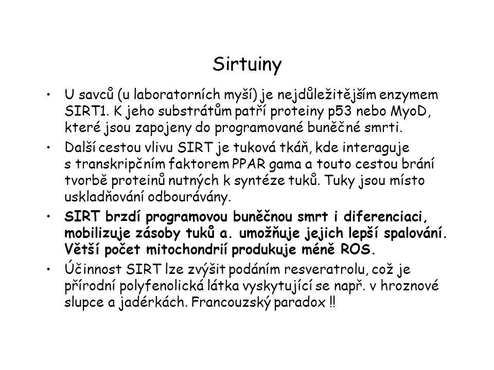 Sirtuiny