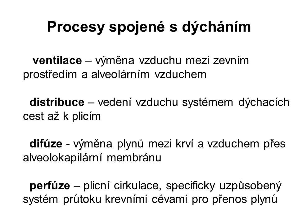 Procesy spojené s dýcháním