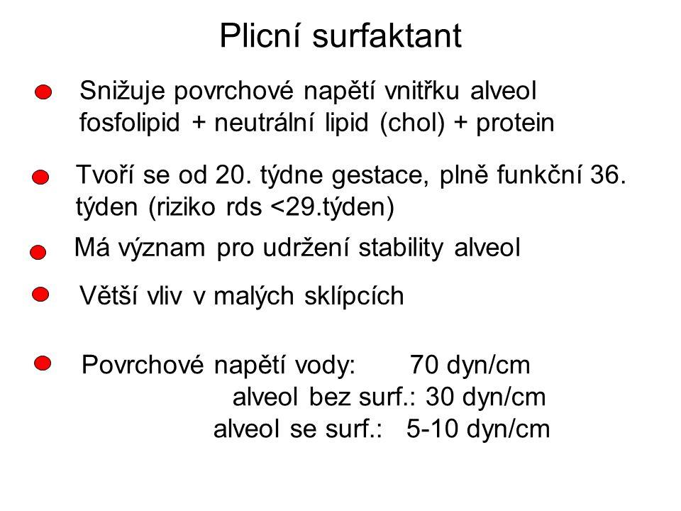 Plicní surfaktant Snižuje povrchové napětí vnitřku alveol