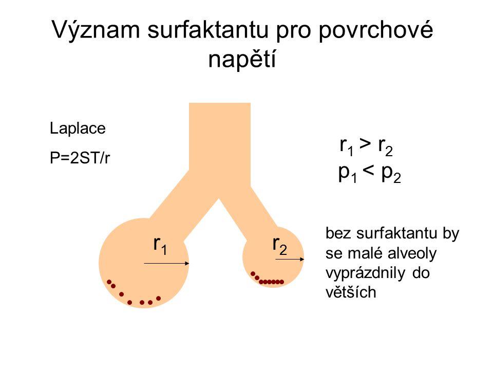 Význam surfaktantu pro povrchové napětí