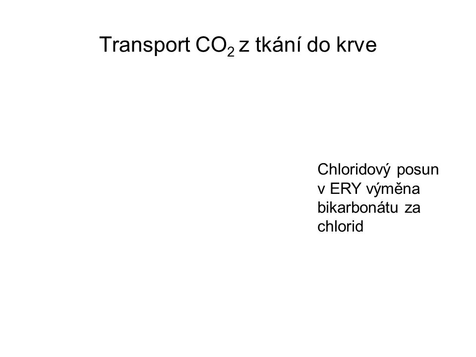 Transport CO2 z tkání do krve