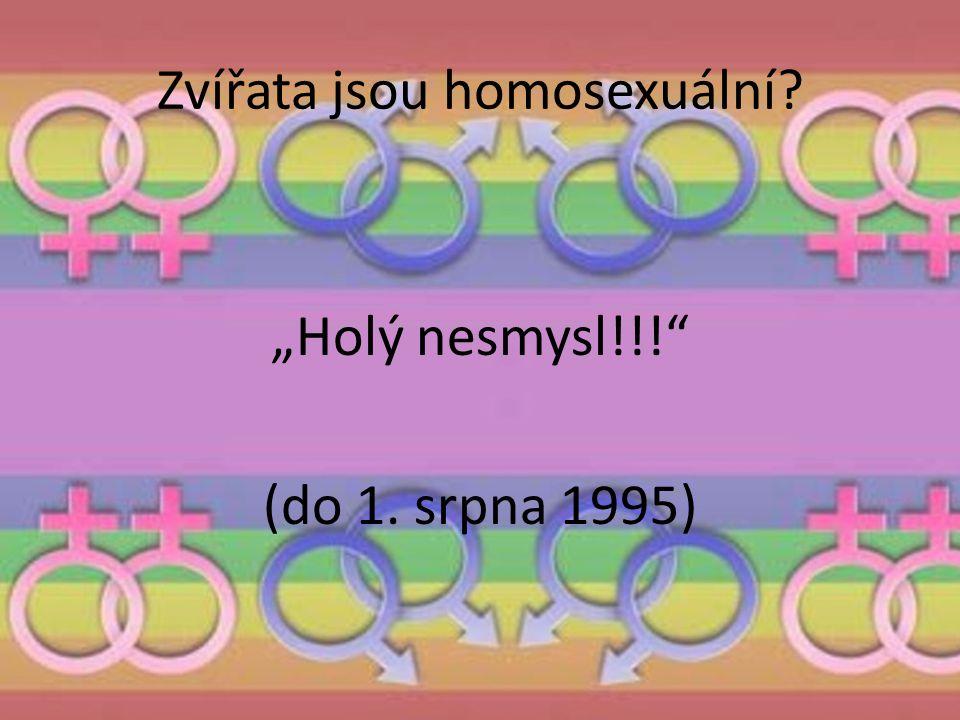 Zvířata jsou homosexuální