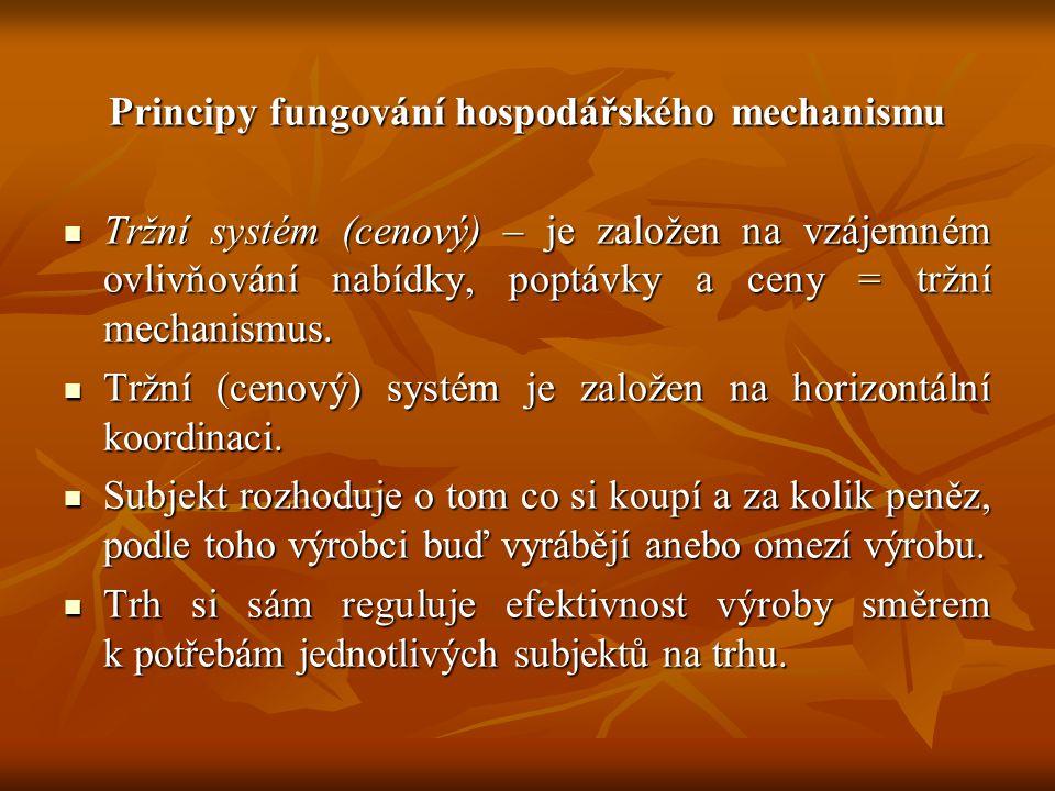 Principy fungování hospodářského mechanismu