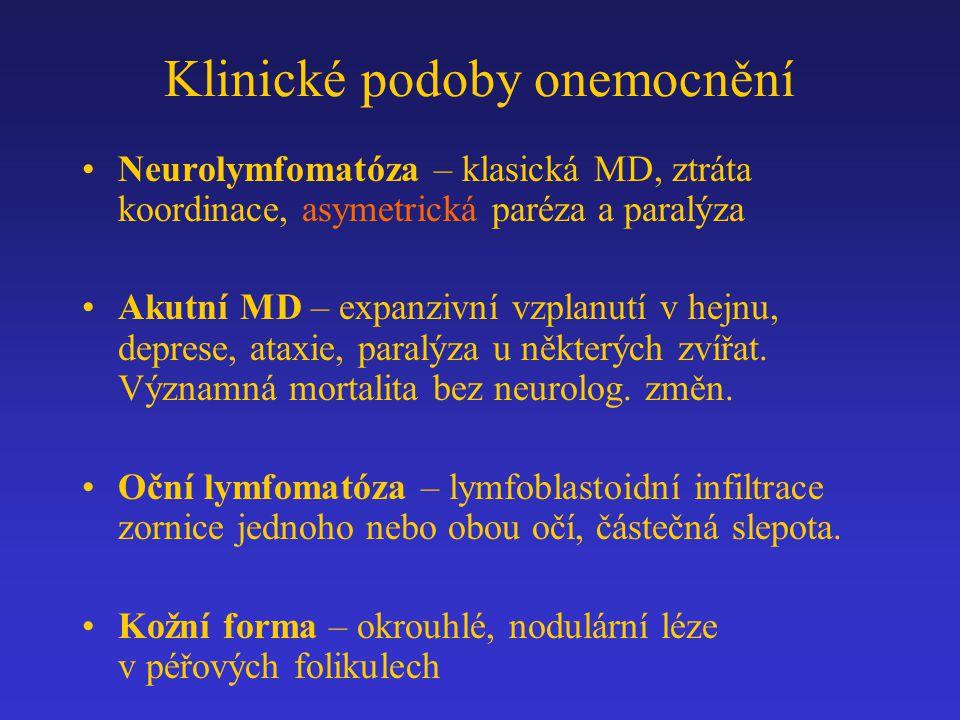 Klinické podoby onemocnění