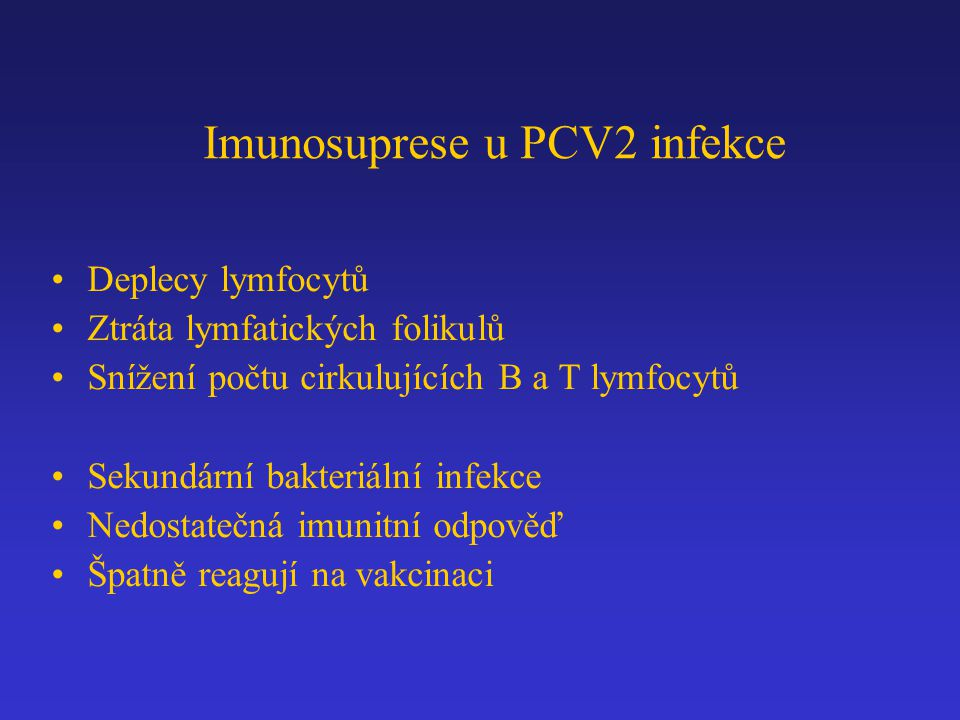 Imunosuprese u PCV2 infekce