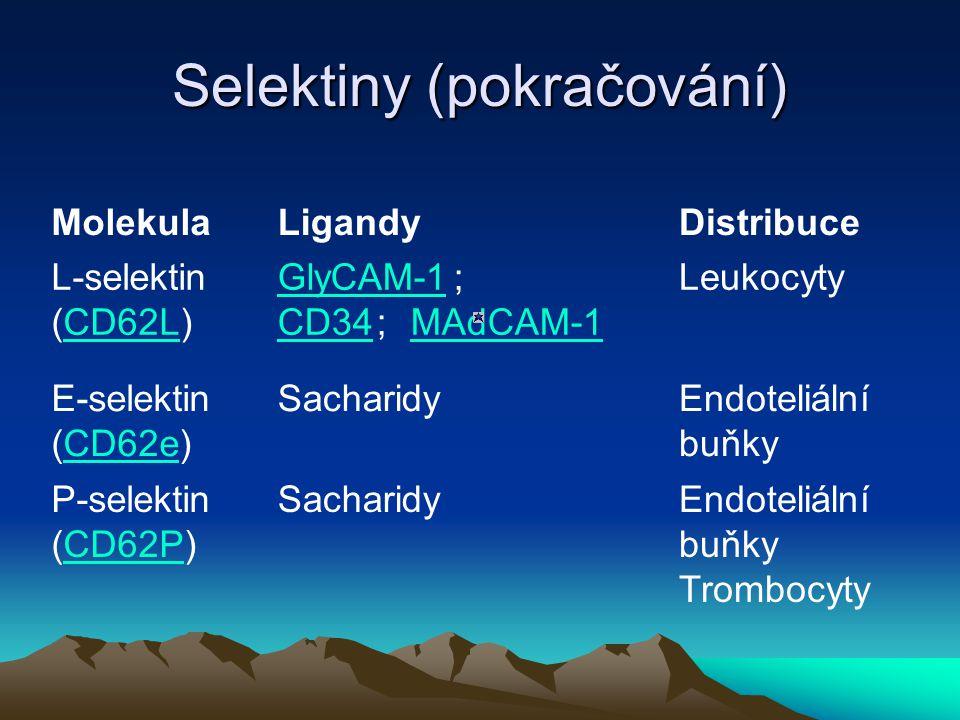 Selektiny (pokračování)