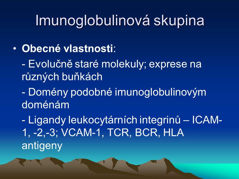 Imunoglobulinová skupina