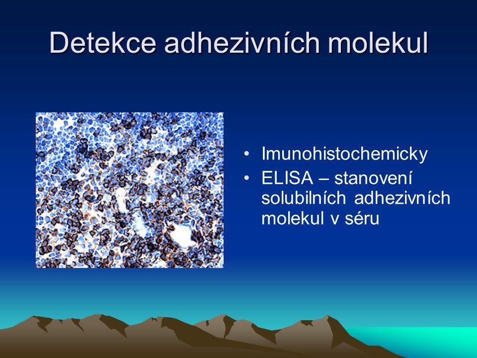 Detekce adhezivních molekul