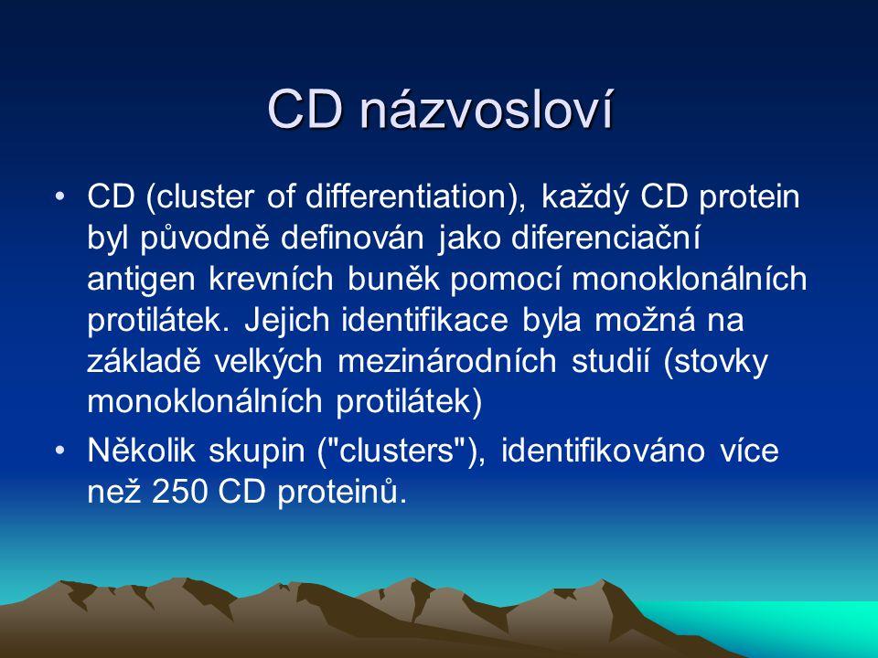 CD názvosloví