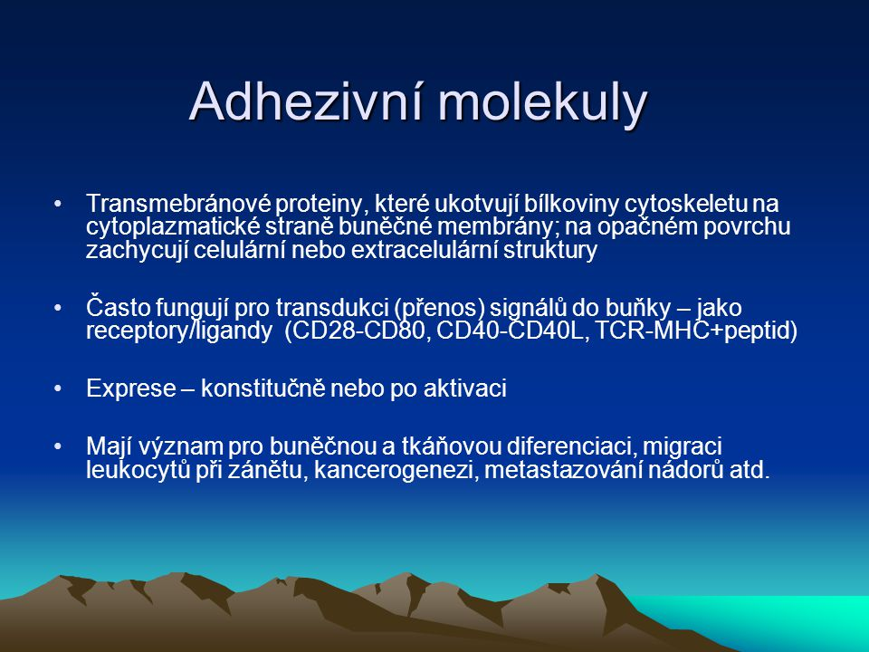 Adhezivní molekuly