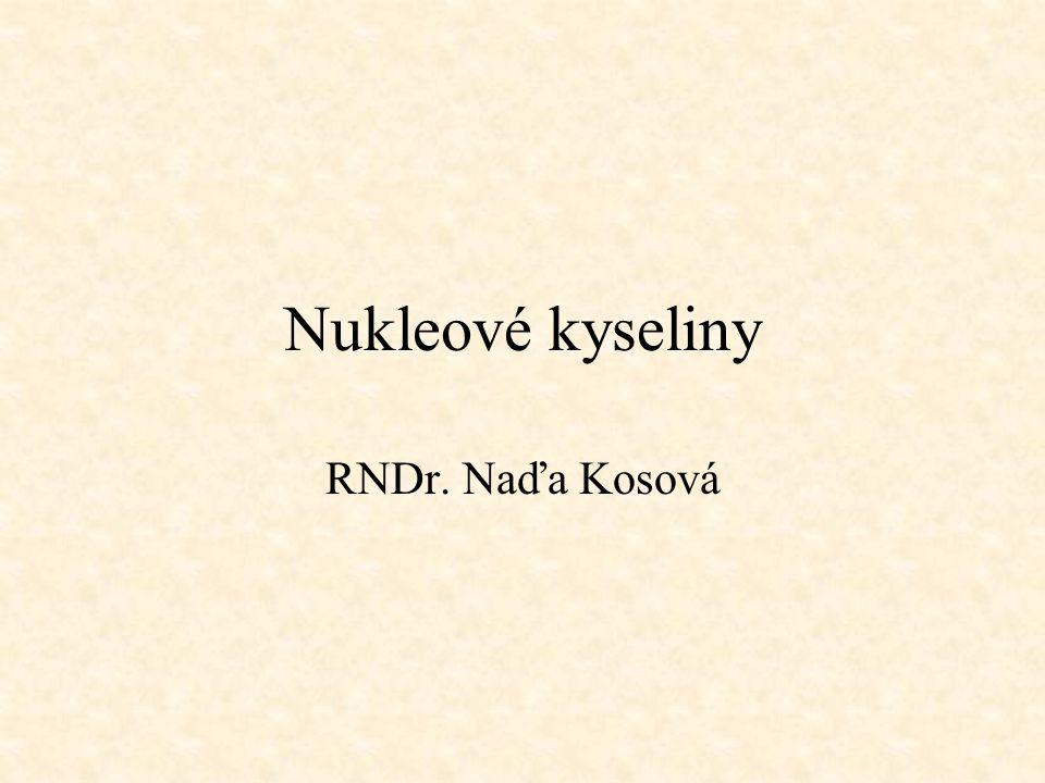 Nukleové kyseliny RNDr. Naďa Kosová
