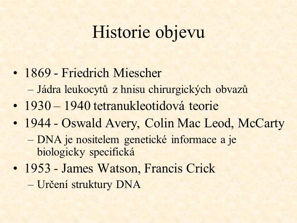 Historie objevu 1869 - Friedrich Miescher