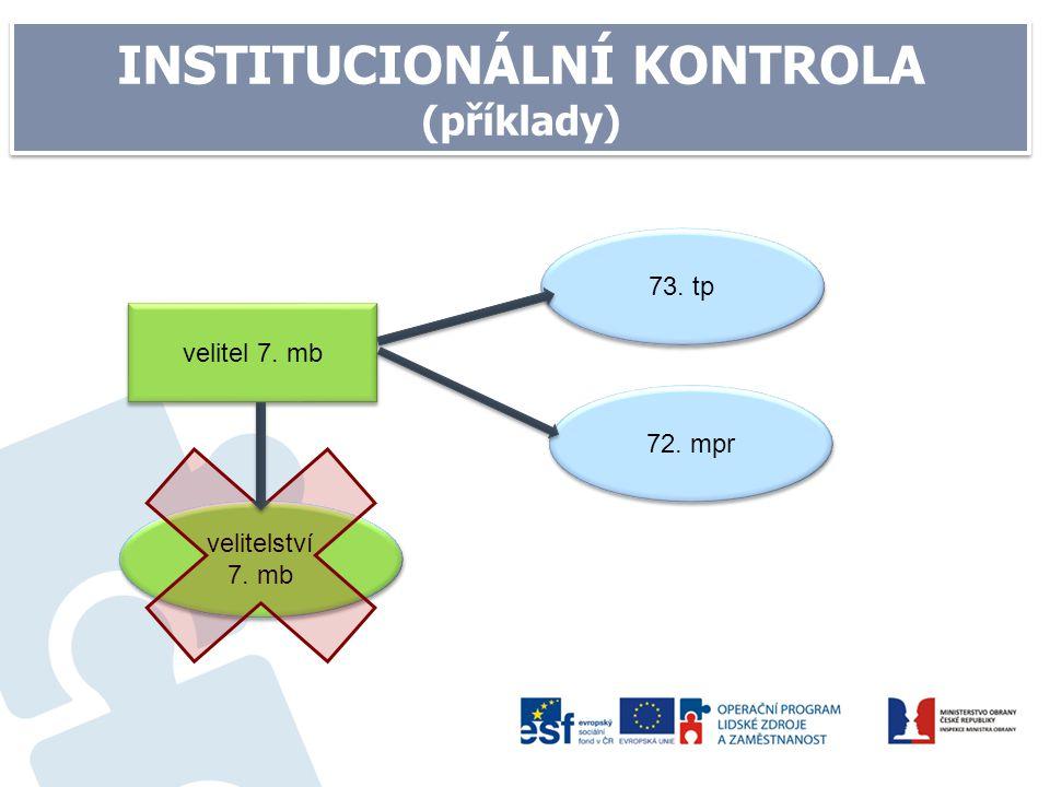 INSTITUCIONÁLNÍ KONTROLA (příklady)