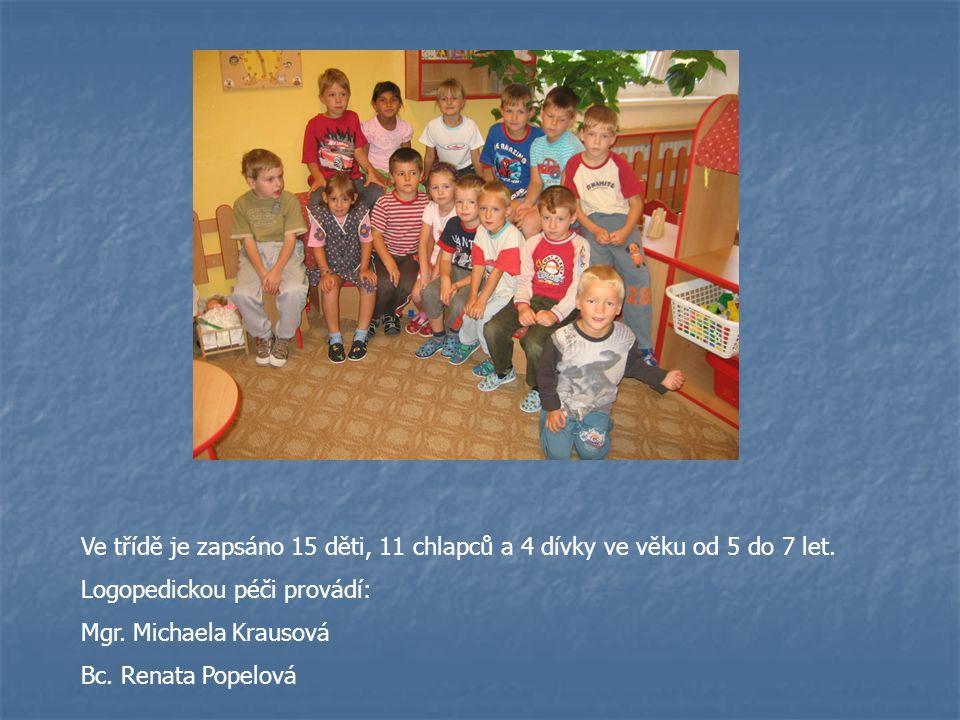 Ve třídě je zapsáno 15 děti, 11 chlapců a 4 dívky ve věku od 5 do 7 let.