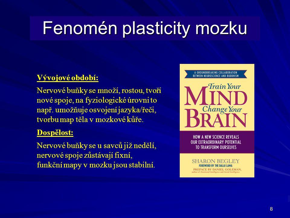 Fenomén plasticity mozku