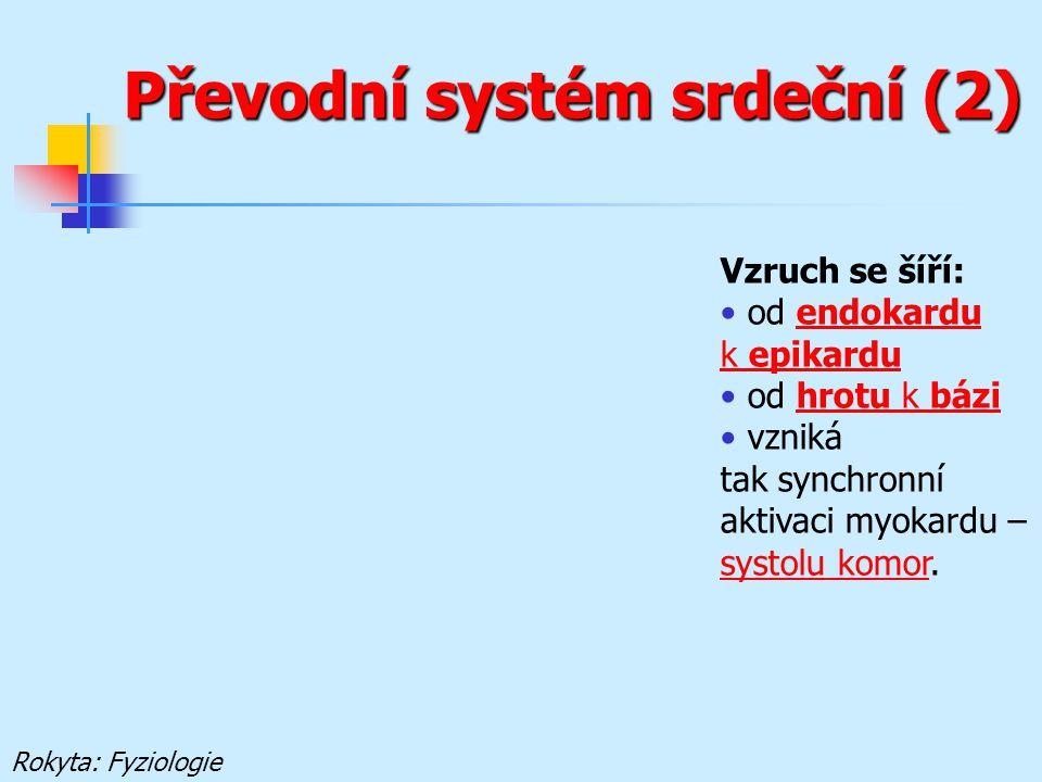 Převodní systém srdeční (2)