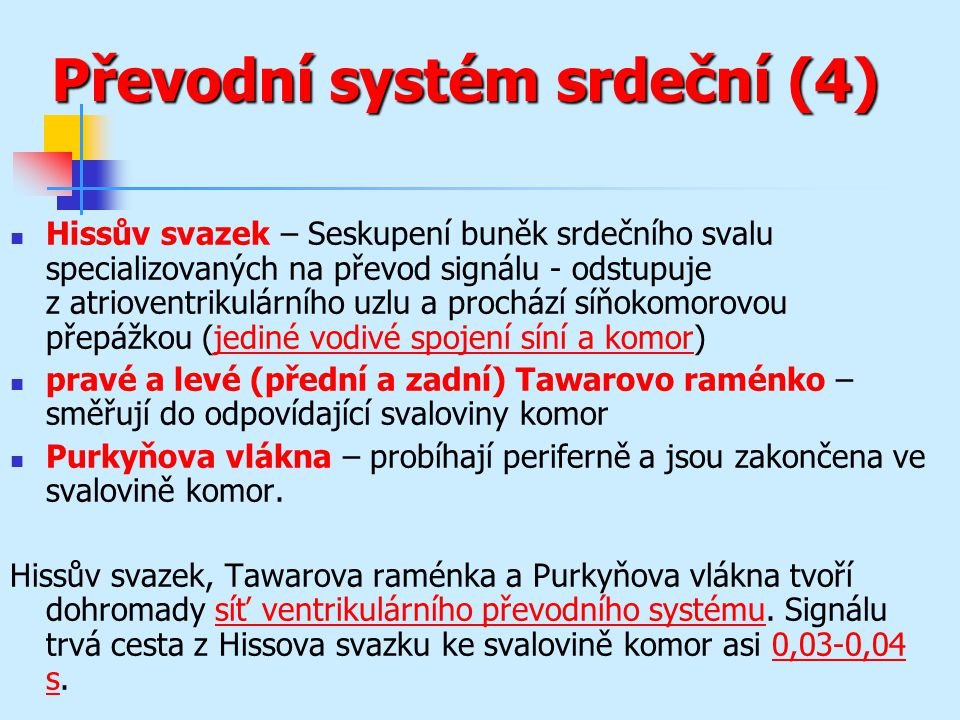 Převodní systém srdeční (4)