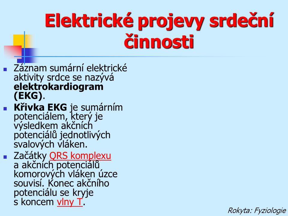 Elektrické projevy srdeční činnosti