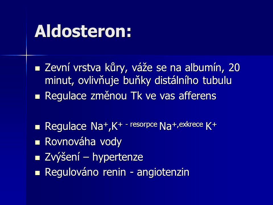 Aldosteron: Zevní vrstva kůry, váže se na albumín, 20 minut, ovlivňuje buňky distálního tubulu. Regulace změnou Tk ve vas afferens.